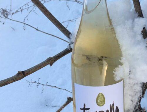 93 punts Decanter pel vi Troballa Blanc 2019